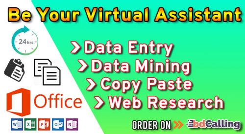 Be Your Virtual Assistant for Data Entry, Data Mining, Web Research, Copy Paste